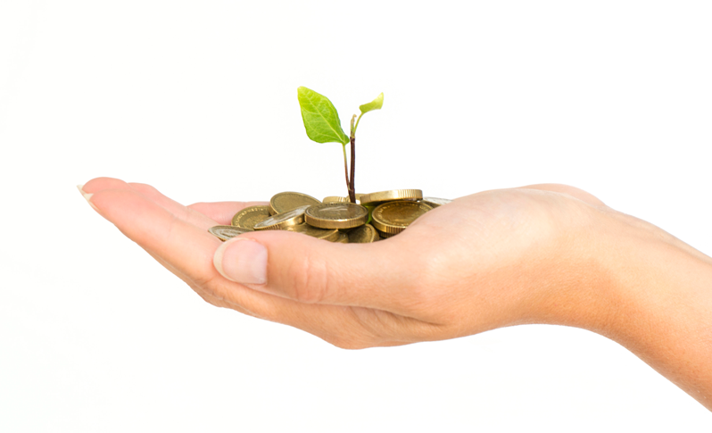 Woman's hand holding plant growing out of coins